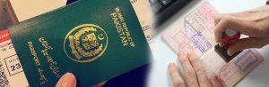 Visa Consultant Agency