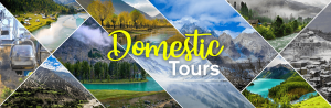 Domestic Tour Packages